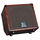 Beta Aivin WOOD30 30W Acoustic Amplifier